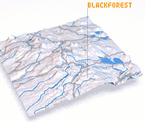 3d view of Black Forest