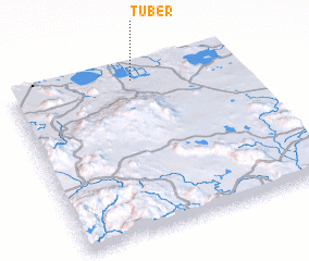 3d view of Tuber