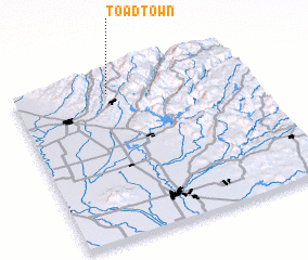 3d view of Toadtown