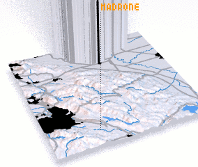 3d view of Madrone