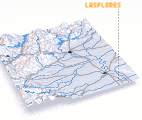 3d view of Las Flores