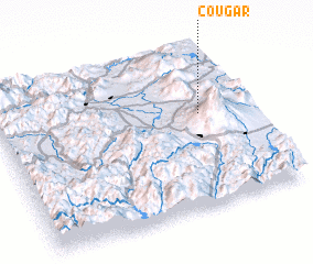 3d view of Cougar