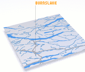 3d view of Burns Lake