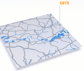 3d view of Gayo