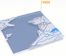 3d view of Cohoe