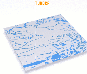3d view of Tundra