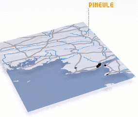 3d view of Pimeule
