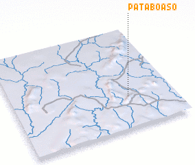3d view of Pataboaso