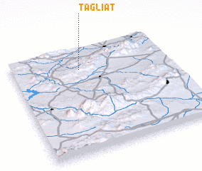3d view of Tagliat