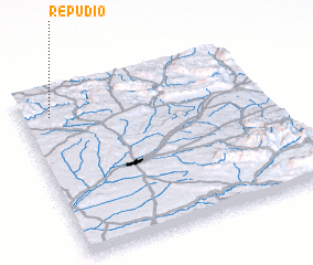 3d view of Repudio