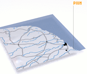 3d view of Pium