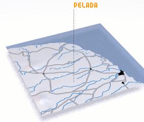 3d view of Pelada