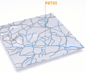 3d view of Patos