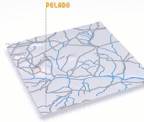 3d view of Pelado