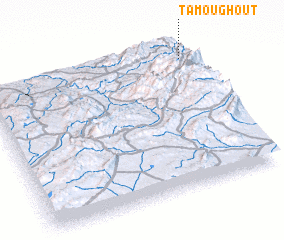 3d view of Tamoughout