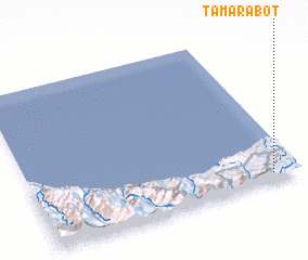 3d view of Tamarabot
