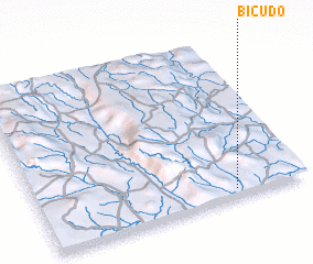 3d view of Bicudo