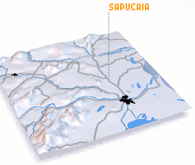 3d view of Sapucaia