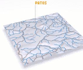 3d view of Patos