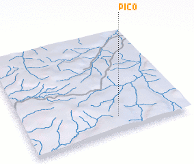 3d view of Pico