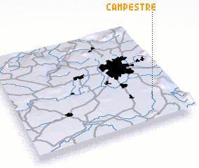 3d view of Campestre