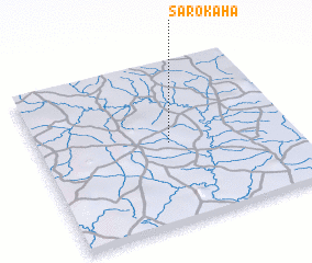 3d view of Sarokaha