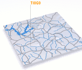 3d view of Tiogo