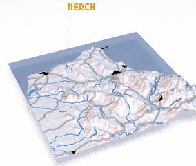 3d view of Merch