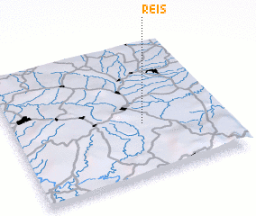3d view of Reis