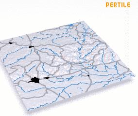 3d view of Pertile