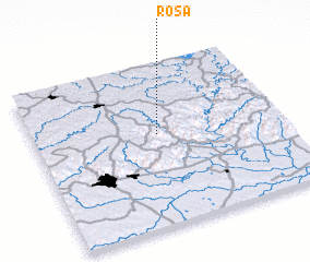 3d view of Rosa