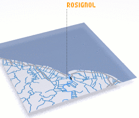 3d view of Rosignol