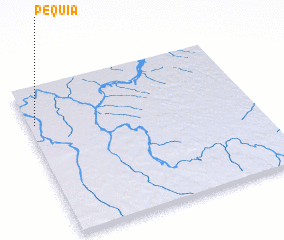 3d view of Pequiá