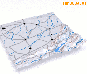 3d view of Tamoujjout