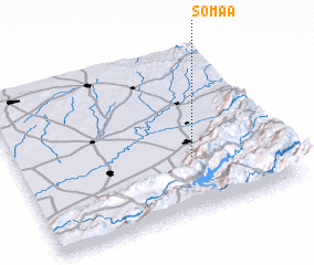 3d view of Somaa