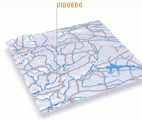 3d view of Viduedo