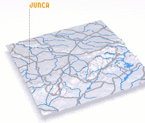 3d view of Junça