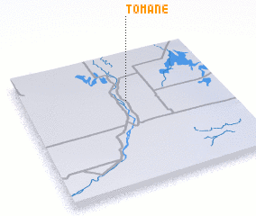 3d view of Tomane