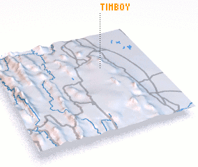 3d view of Timboy
