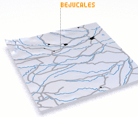 3d view of Bejucales
