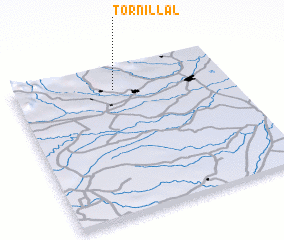 3d view of Tornillal