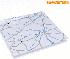 3d view of Bajo Sin Tripa