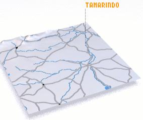 3d view of Tamarindo