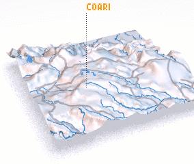 3d view of Coari