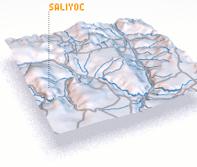 3d view of Saliyoc