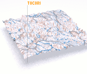 3d view of Tocori