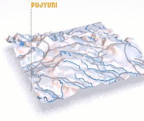 3d view of Pujyuni