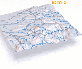 3d view of Paccha
