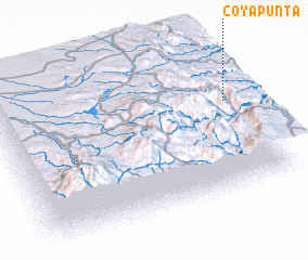 3d view of Coyapunta