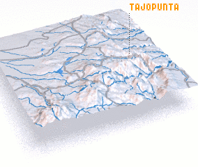 3d view of Tajopunta